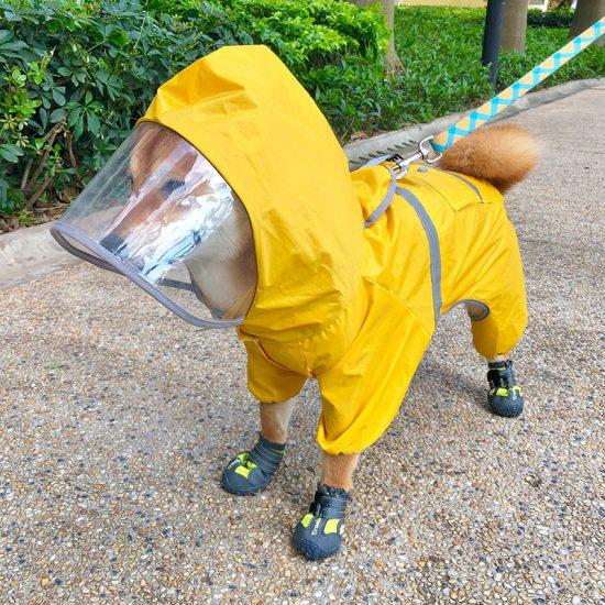 Dog raincoat 1